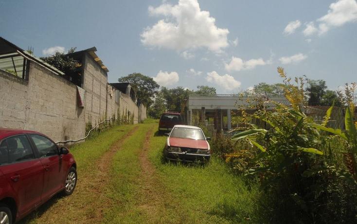 Foto de terreno habitacional en venta en  , coatepec centro, coatepec, veracruz de ignacio de la llave, 1295165 No. 01