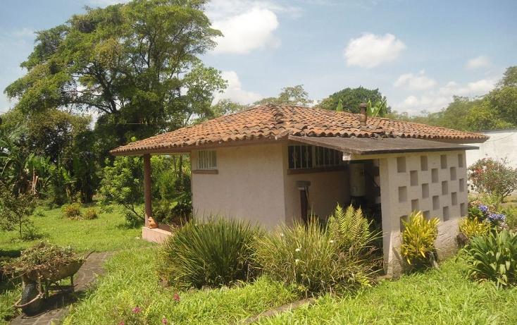 Foto de terreno habitacional en venta en  , coatepec centro, coatepec, veracruz de ignacio de la llave, 1295165 No. 03