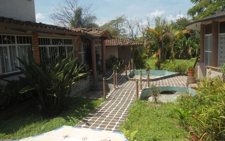 Foto de terreno habitacional en venta en  , coatepec centro, coatepec, veracruz de ignacio de la llave, 1295165 No. 04