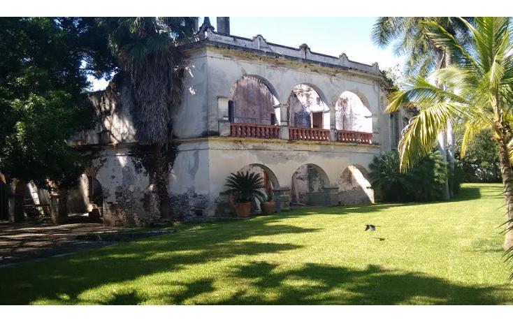 Foto de rancho en venta en  , coatlán del río, coatlán del río, morelos, 1639988 No. 13