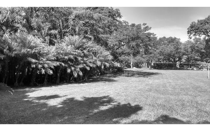 Foto de rancho en venta en  , coatlán del río, coatlán del río, morelos, 1639988 No. 18