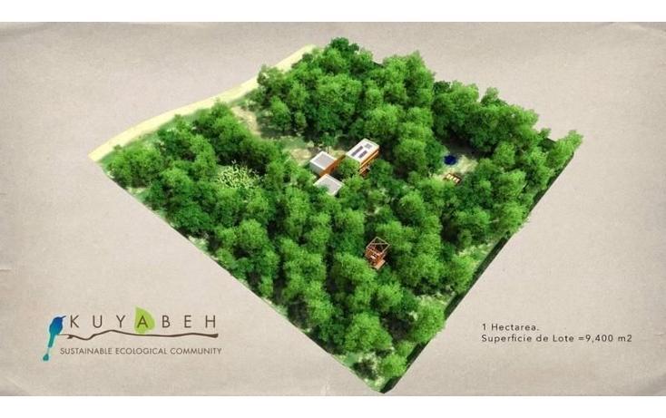 Foto de terreno habitacional en venta en  , coba, tulum, quintana roo, 1955898 No. 01