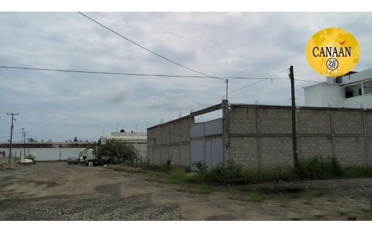 Foto de nave industrial en renta en  , cobos, tuxpan, veracruz de ignacio de la llave, 1430723 No. 09