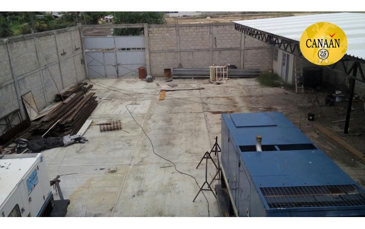 Foto de nave industrial en renta en  , cobos, tuxpan, veracruz de ignacio de la llave, 1430723 No. 13