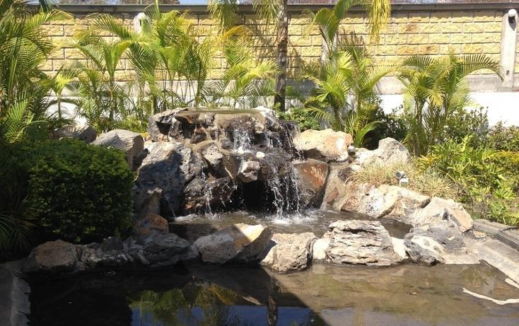 Foto de local en venta en  , cocoyoc, yautepec, morelos, 1558091 No. 13