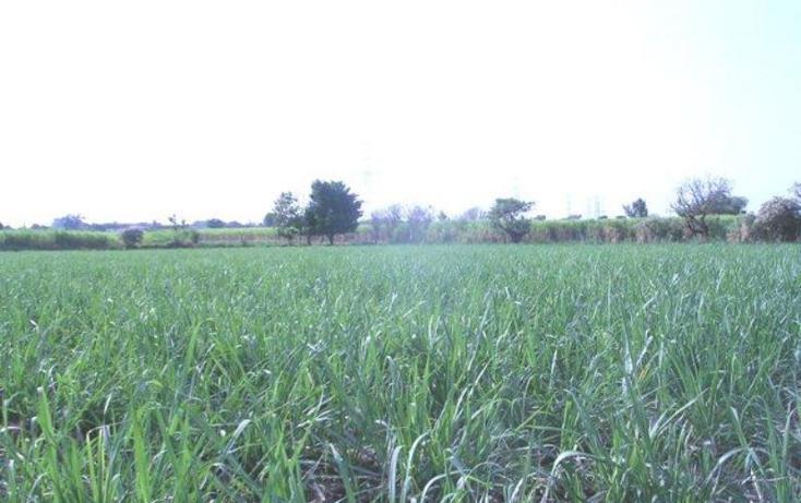 Foto de terreno habitacional en venta en  , cocoyoc, yautepec, morelos, 1751554 No. 01