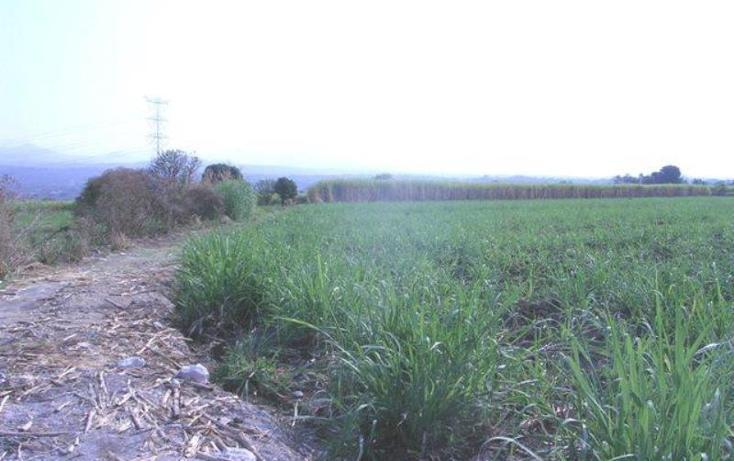 Foto de terreno habitacional en venta en  , cocoyoc, yautepec, morelos, 1751554 No. 03