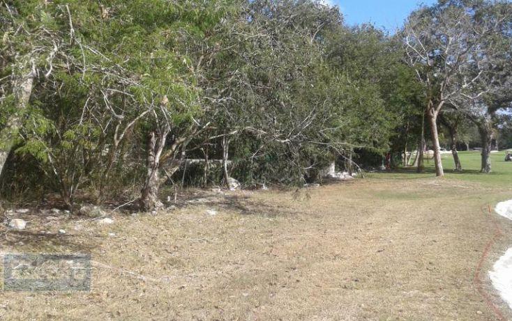Foto de terreno habitacional en venta en cocoyoles, club de golf la ceiba, mérida, yucatán, 1755463 no 05