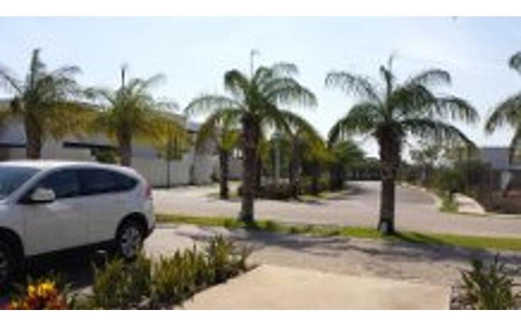 Foto de terreno habitacional en venta en  , cocoyoles, mérida, yucatán, 1525271 No. 04