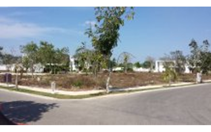 Foto de terreno habitacional en venta en  , cocoyoles, mérida, yucatán, 1525271 No. 05