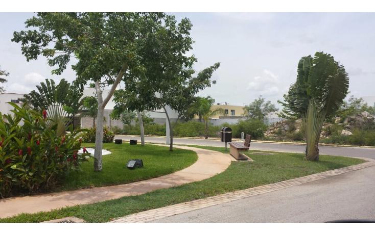 Foto de terreno habitacional en venta en  , cocoyoles, mérida, yucatán, 1739166 No. 03