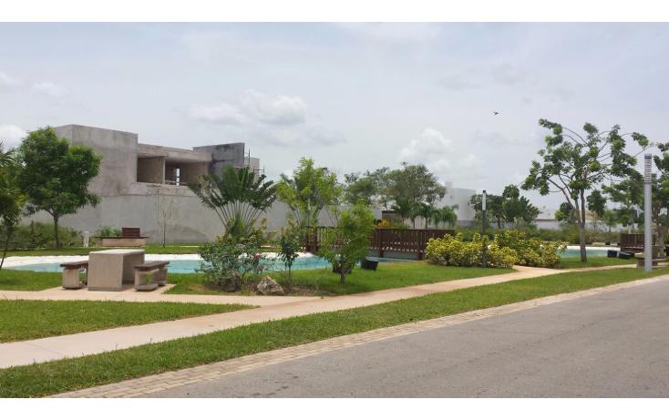 Foto de terreno habitacional en venta en  , cocoyoles, mérida, yucatán, 1739166 No. 04