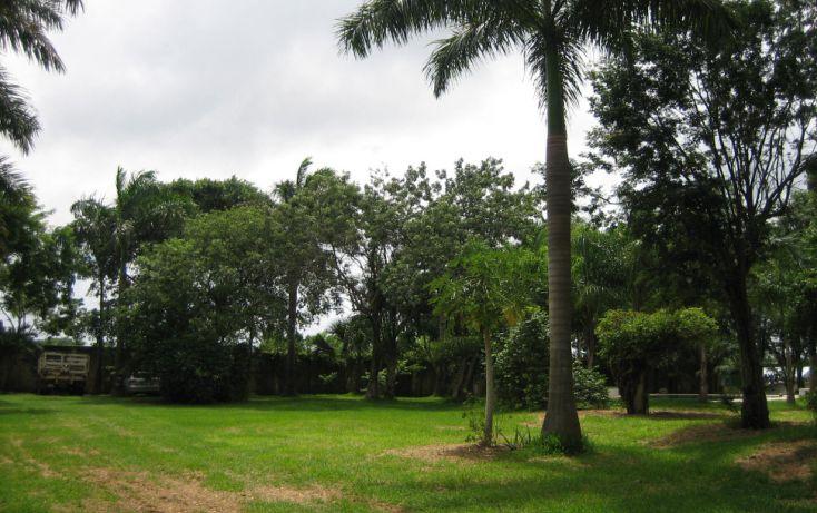 Foto de casa en renta en, colegios, benito juárez, quintana roo, 1379331 no 04