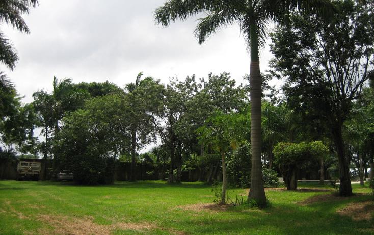 Foto de casa en renta en  , colegios, benito juárez, quintana roo, 1379331 No. 04
