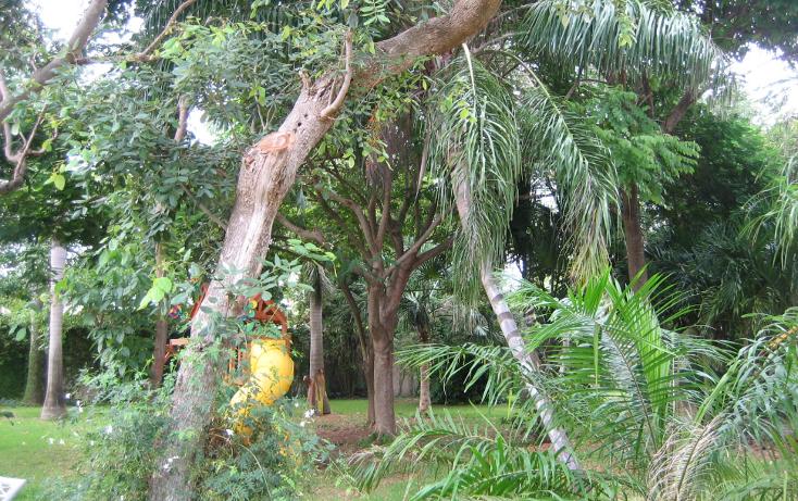 Foto de casa en renta en  , colegios, benito juárez, quintana roo, 1379331 No. 08