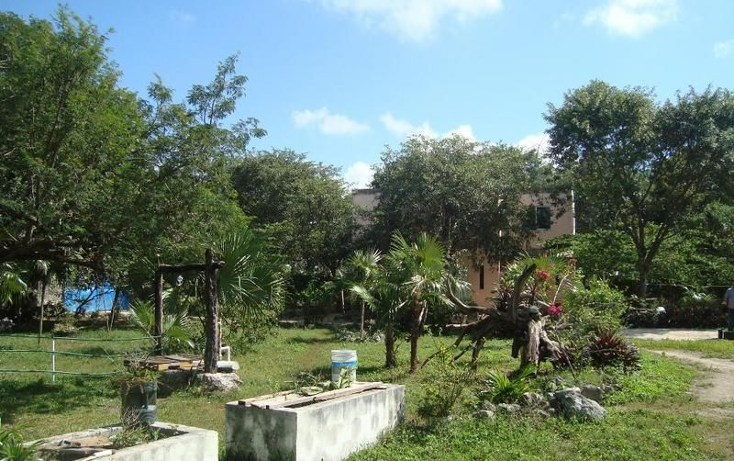 Foto de terreno comercial en venta en  , colegios, benito juárez, quintana roo, 1982176 No. 10
