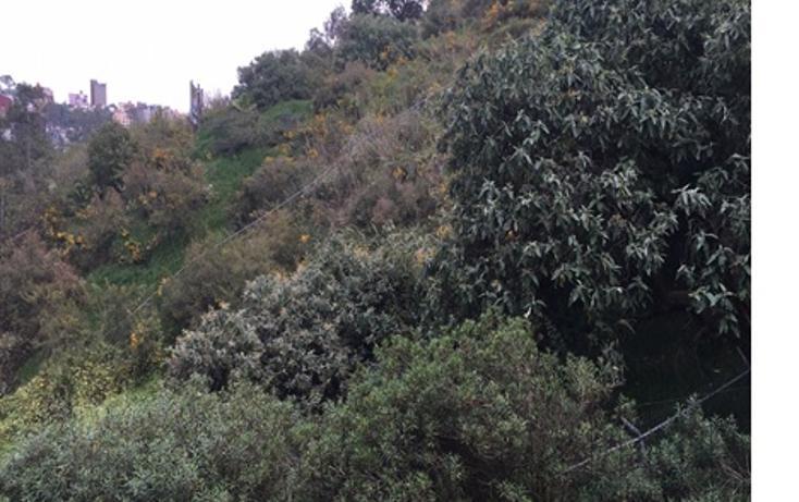 Foto de terreno habitacional en venta en  , colina del sur, álvaro obregón, distrito federal, 1286745 No. 01