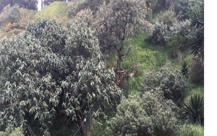 Foto de terreno habitacional en venta en  , colina del sur, ?lvaro obreg?n, distrito federal, 1665086 No. 03