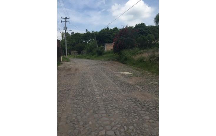Foto de terreno habitacional en venta en  , colinas de cajititlán, tlajomulco de zúñiga, jalisco, 1703710 No. 05