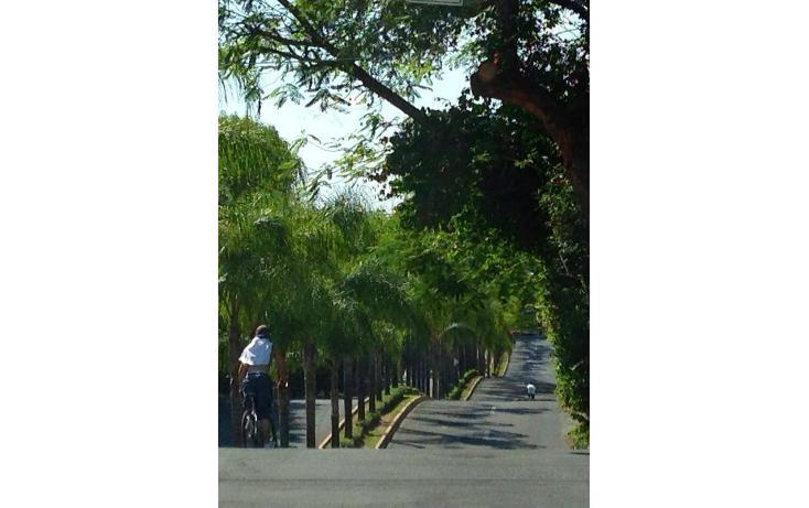 Foto de terreno habitacional en venta en  , colinas de san javier, guadalajara, jalisco, 829817 No. 01