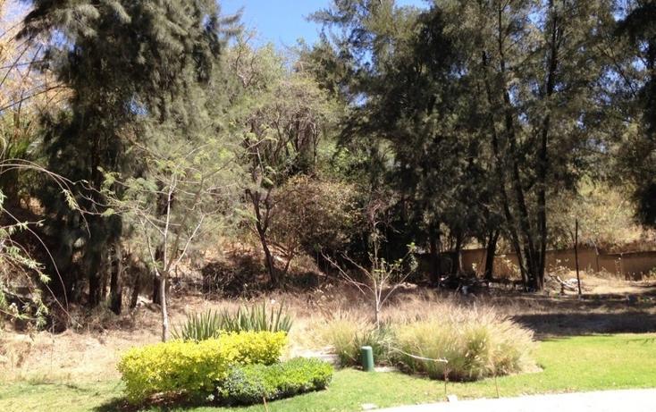 Foto de terreno habitacional en venta en loma ancha , colinas de san javier, guadalajara, jalisco, 829817 No. 08