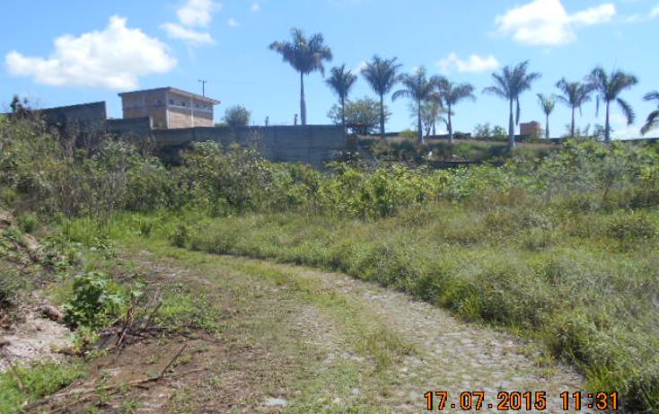 Foto de terreno habitacional en venta en  , colinas del rey, tepic, nayarit, 1567956 No. 02