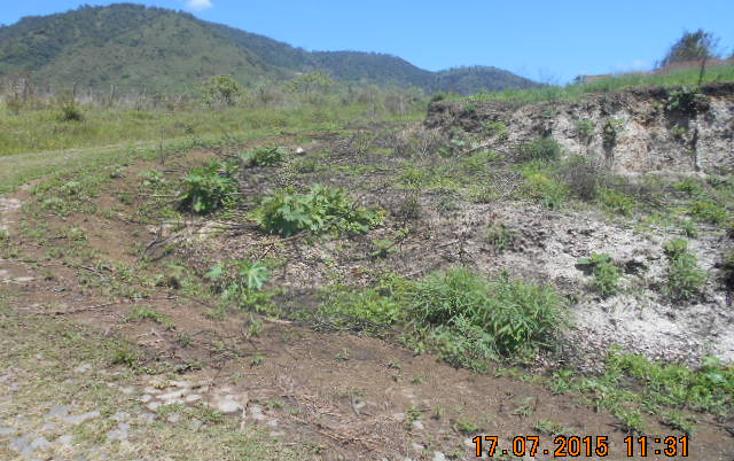 Foto de terreno habitacional en venta en  , colinas del rey, tepic, nayarit, 1567956 No. 03