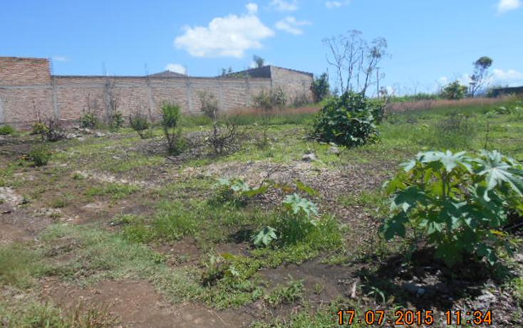 Foto de terreno habitacional en venta en  , colinas del rey, tepic, nayarit, 1567956 No. 06