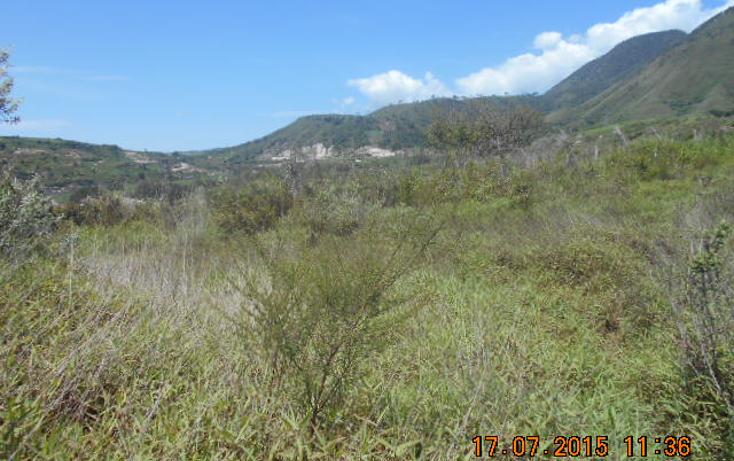 Foto de terreno habitacional en venta en  , colinas del rey, tepic, nayarit, 1567956 No. 08
