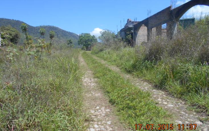 Foto de terreno habitacional en venta en  , colinas del rey, tepic, nayarit, 1567956 No. 10