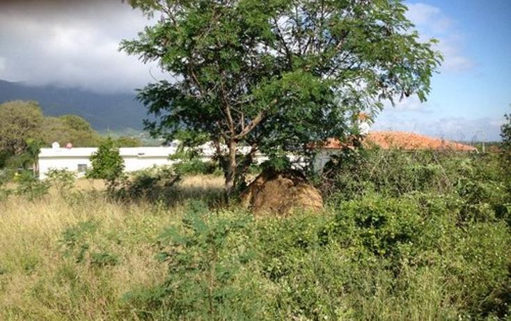 Foto de terreno habitacional en venta en  , colinas del vergel, juárez, nuevo león, 1139491 No. 02