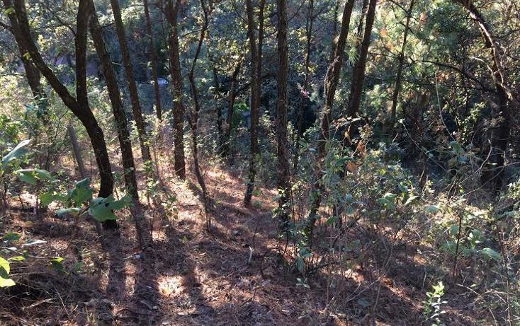 Foto de terreno habitacional en venta en colinda con el santuario 0, san gaspar, valle de bravo, méxico, 2649510 No. 04