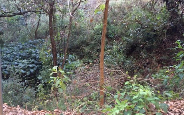 Foto de terreno habitacional en venta en colinda con el santuario 0, san gaspar, valle de bravo, méxico, 2649510 No. 05