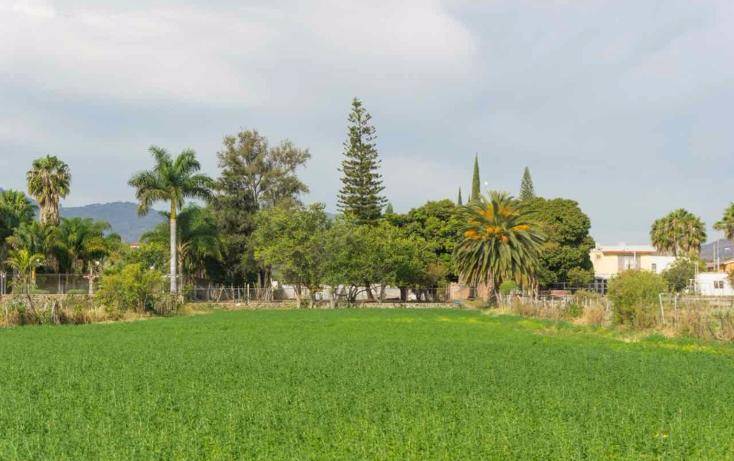Foto de terreno habitacional en venta en  , jocotepec centro, jocotepec, jalisco, 1741296 No. 09