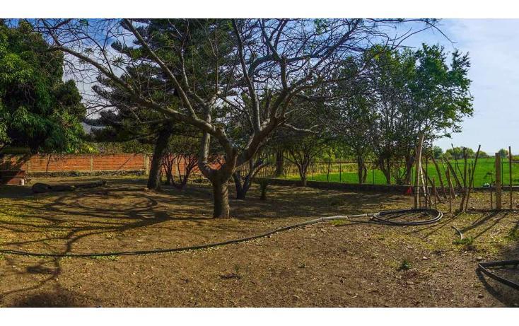 Foto de terreno habitacional en venta en  , jocotepec centro, jocotepec, jalisco, 1741296 No. 11