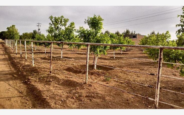 Foto de rancho en venta en  , colon, chihuahua, chihuahua, 388907 No. 02