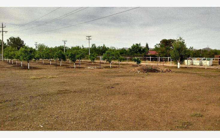 Foto de rancho en venta en  , colon, chihuahua, chihuahua, 388907 No. 06