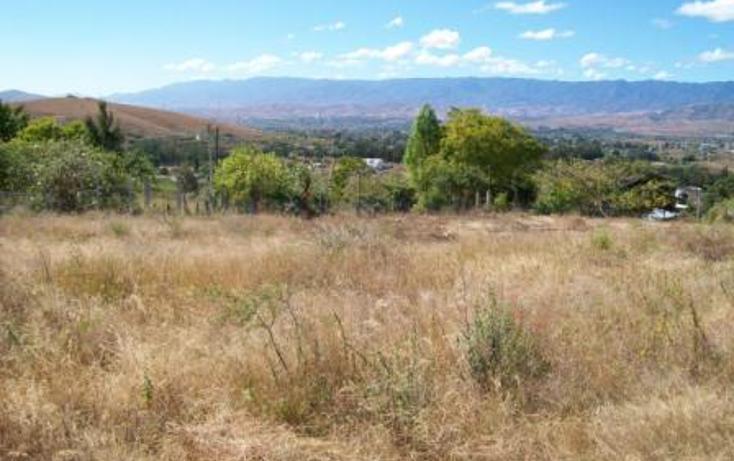 Foto de terreno habitacional en venta en colon , san agustin etla, san agustín etla, oaxaca, 448691 No. 10
