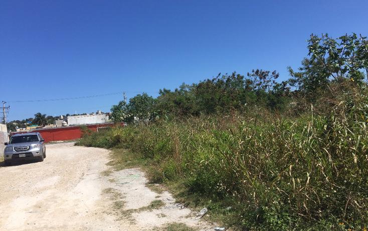 Foto de terreno habitacional en venta en  , colonia méxico, campeche, campeche, 1667118 No. 05