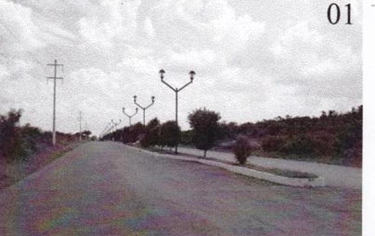 Foto de terreno habitacional en venta en  , colonia yucat?n, tizim?n, yucat?n, 1097215 No. 02