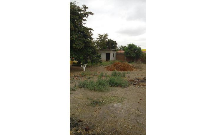 Foto de casa en venta en  , comanito, culiacán, sinaloa, 2000782 No. 06