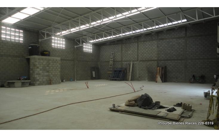 Foto de nave industrial en renta en  , comercial fimex, altamira, tamaulipas, 1052211 No. 03