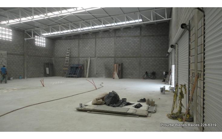 Foto de nave industrial en renta en  , comercial fimex, altamira, tamaulipas, 1052211 No. 04