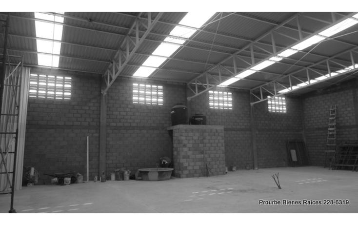 Foto de nave industrial en renta en  , comercial fimex, altamira, tamaulipas, 1052211 No. 05