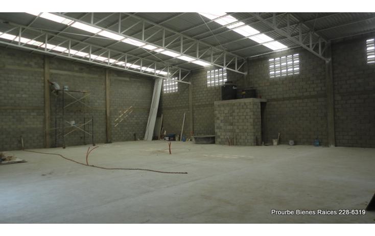 Foto de nave industrial en renta en  , comercial fimex, altamira, tamaulipas, 1052211 No. 06