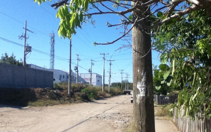 Foto de nave industrial en renta en  , comercial fimex, altamira, tamaulipas, 1119107 No. 08