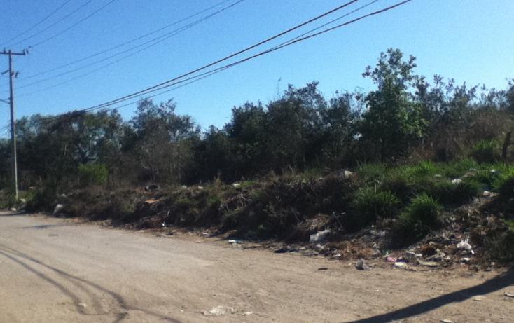 Foto de nave industrial en renta en  , comercial fimex, altamira, tamaulipas, 1119107 No. 09