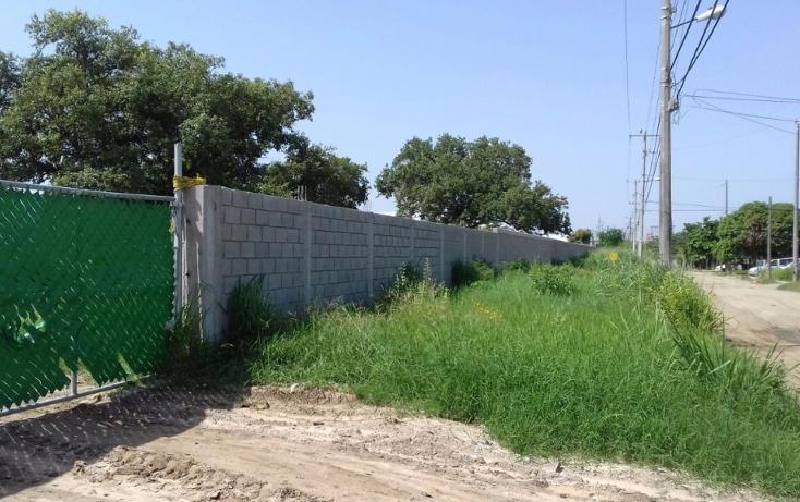 Foto de terreno comercial en renta en  , comercial fimex, altamira, tamaulipas, 1136087 No. 01