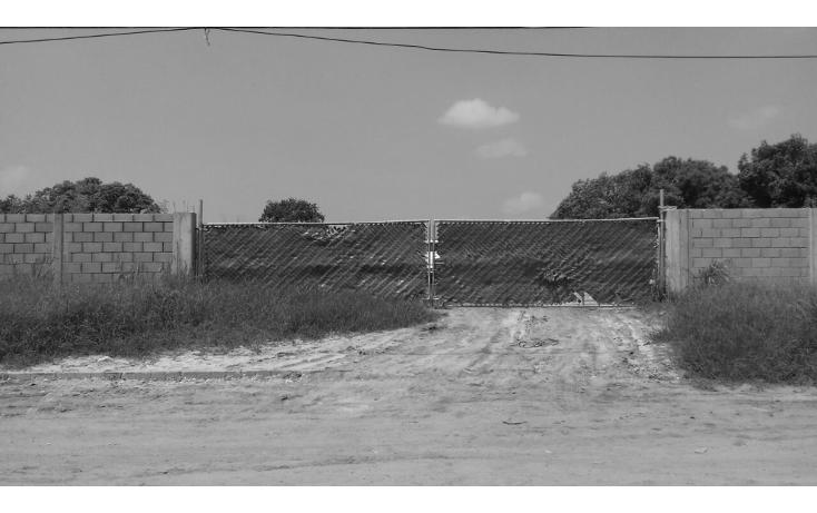 Foto de terreno comercial en renta en  , comercial fimex, altamira, tamaulipas, 1136087 No. 02