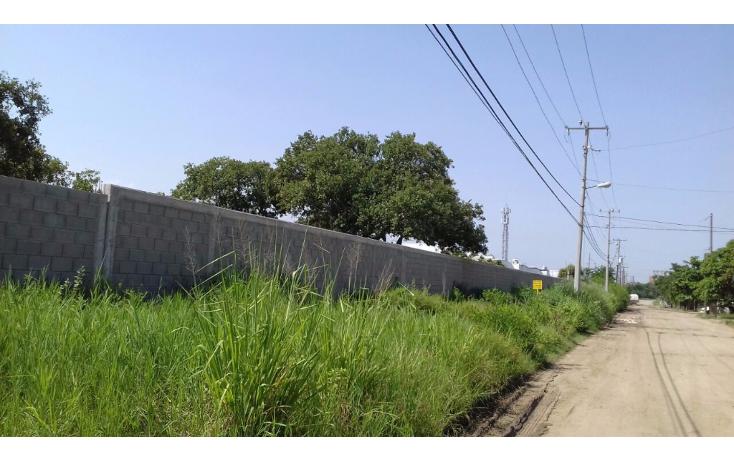 Foto de terreno comercial en renta en  , comercial fimex, altamira, tamaulipas, 1136087 No. 03